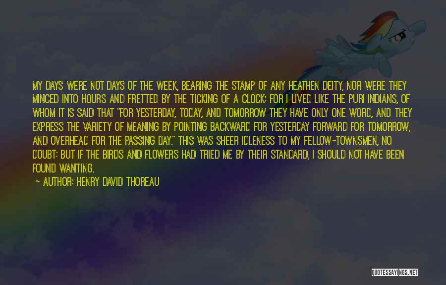 Time Ticking Quotes By Henry David Thoreau