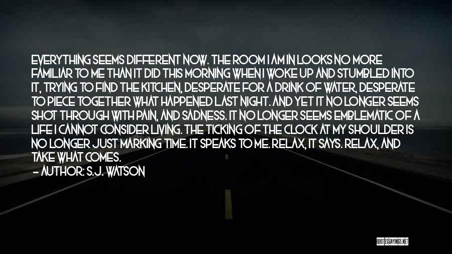 Time Ticking Quotes By S.J. Watson