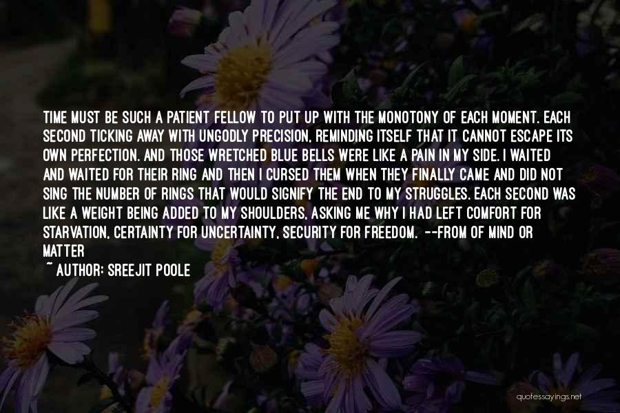 Time Ticking Quotes By Sreejit Poole