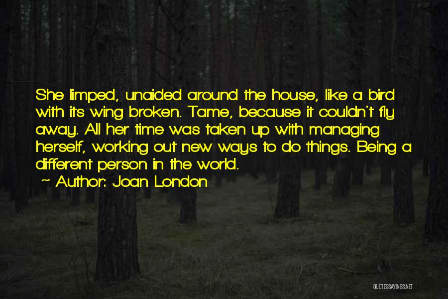 Time To Fly Away Quotes By Joan London
