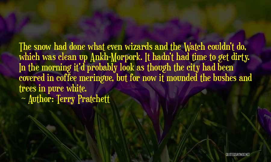 Time To Get It Done Quotes By Terry Pratchett