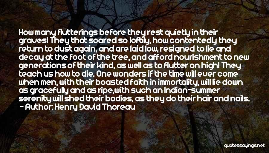 Time To Rest Quotes By Henry David Thoreau