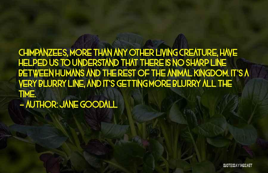 Time To Rest Quotes By Jane Goodall