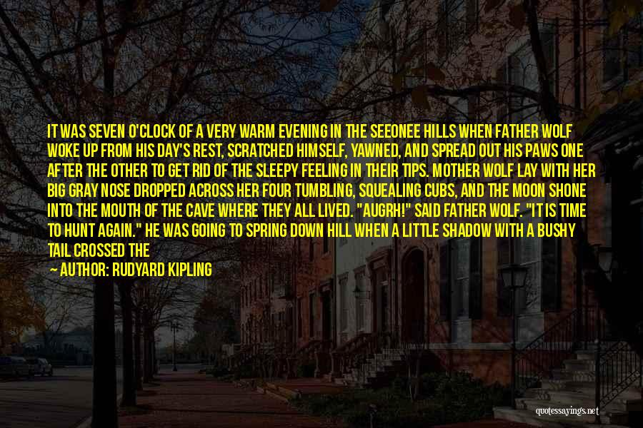 Time To Rest Quotes By Rudyard Kipling