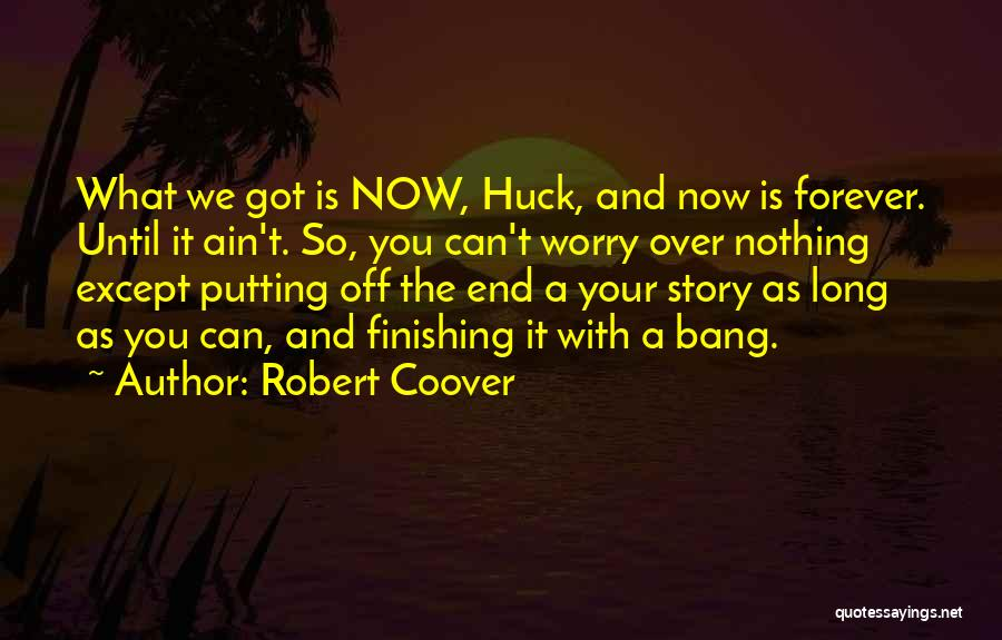 Time With Meaning Quotes By Robert Coover