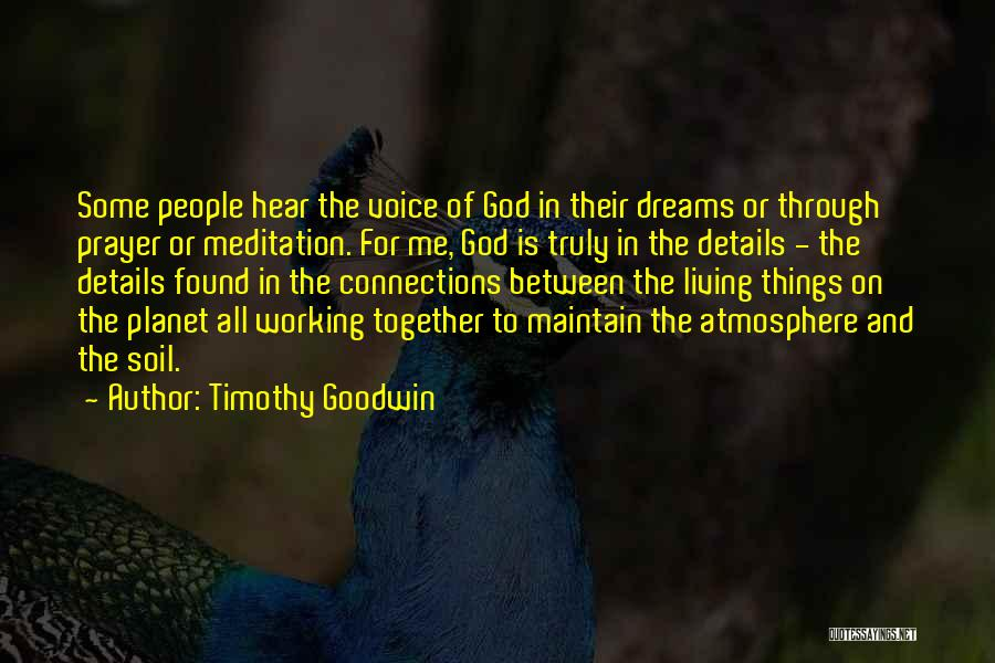 Timothy Goodwin Quotes 1788378