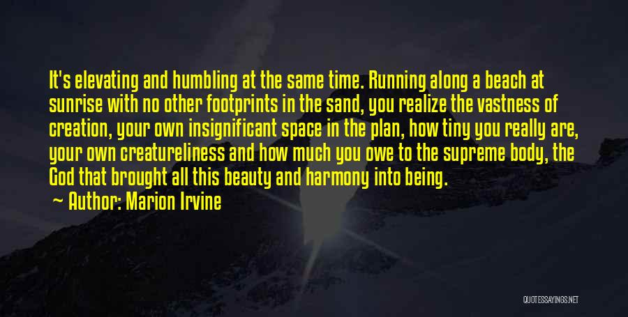 Tiny Footprints Quotes By Marion Irvine
