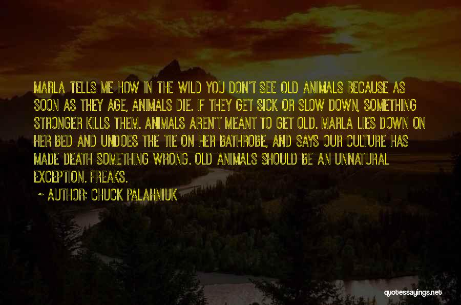 To Be Stronger Quotes By Chuck Palahniuk