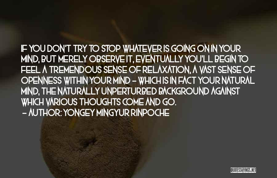 To Begin Quotes By Yongey Mingyur Rinpoche