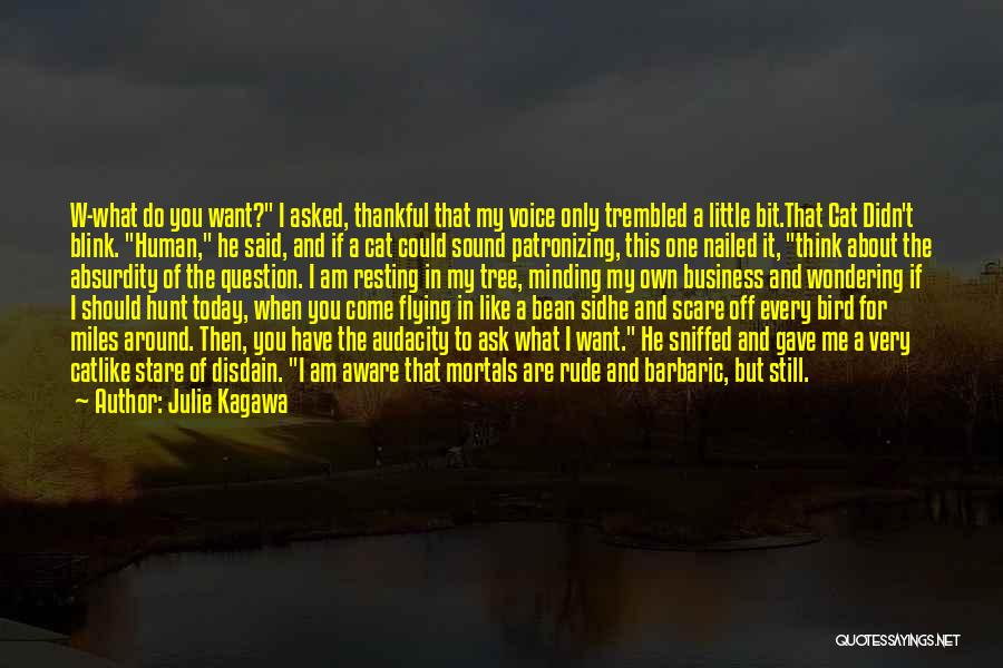 Today Funny Quotes By Julie Kagawa