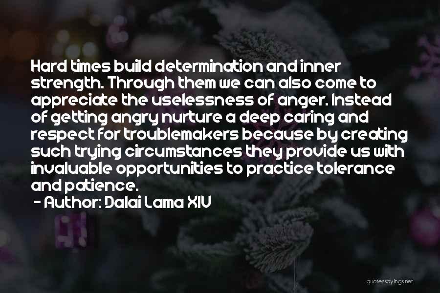 Tolerance And Respect Quotes By Dalai Lama XIV