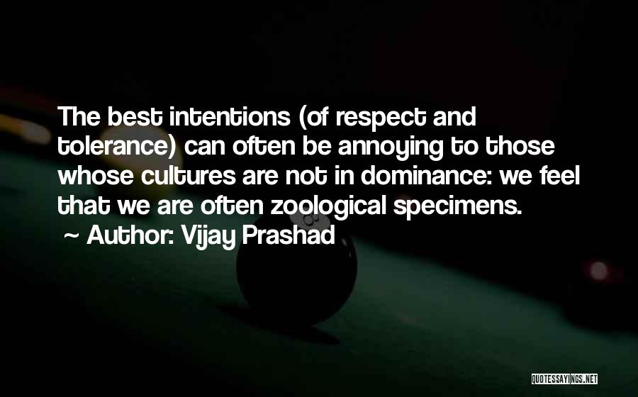 Tolerance And Respect Quotes By Vijay Prashad