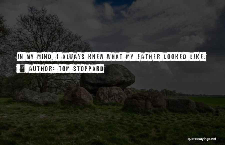 Tom Stoppard Quotes 1285149