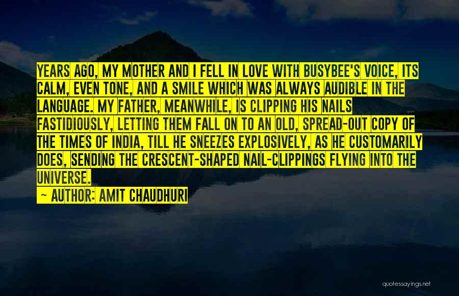 Tone Quotes By Amit Chaudhuri