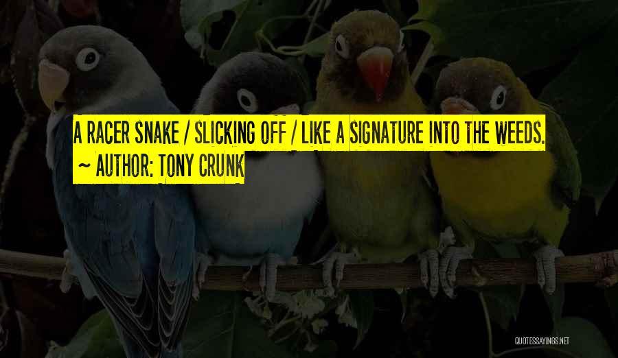 Tony Crunk Quotes 1946556