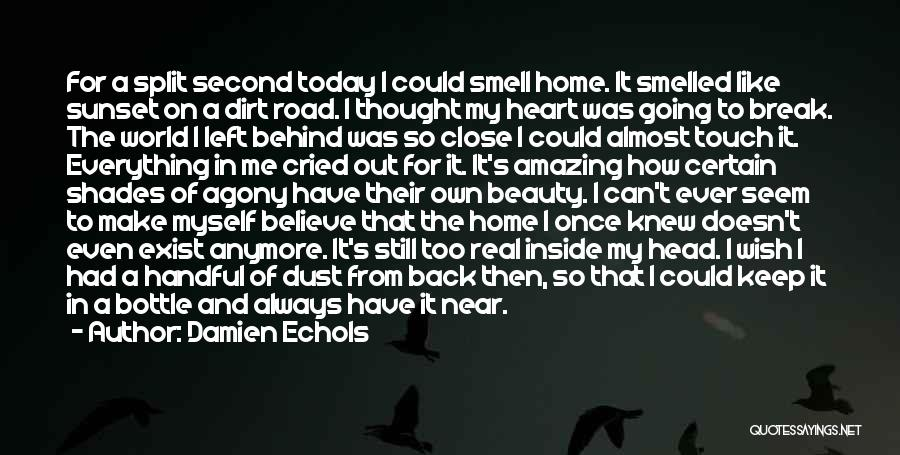 Too Close To Home Quotes By Damien Echols