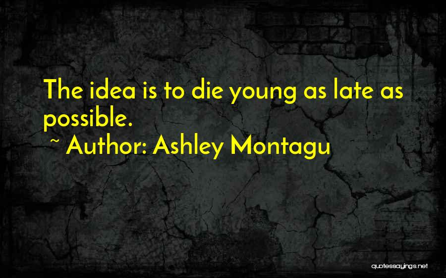 Too Late To Die Young Quotes By Ashley Montagu