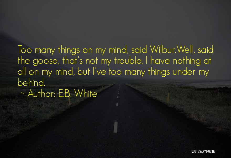 Too Many Things On My Mind Quotes By E.B. White