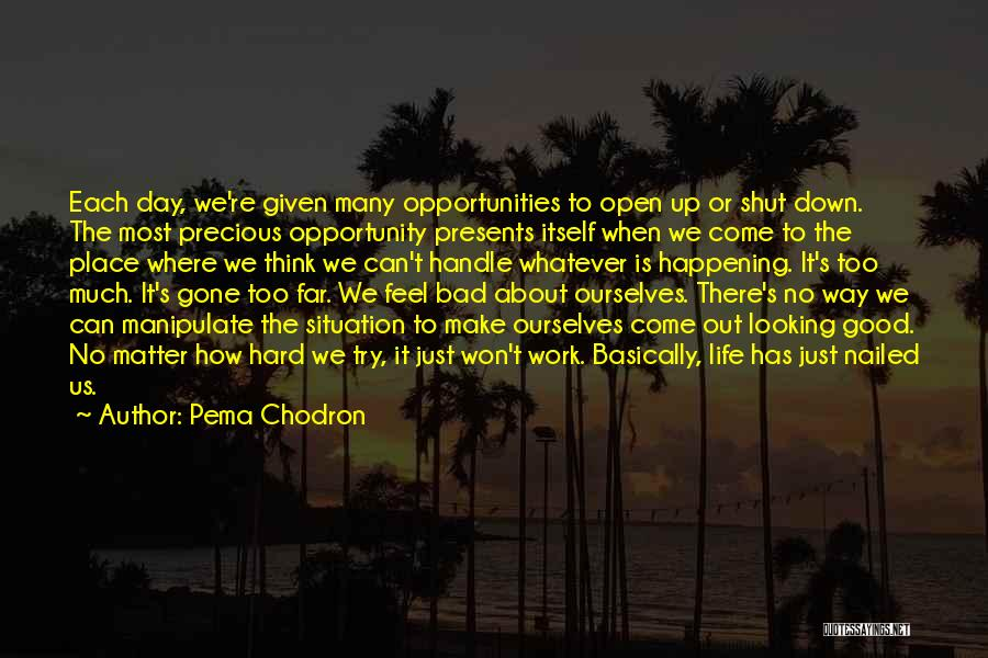 Too Much Hard Work Quotes By Pema Chodron