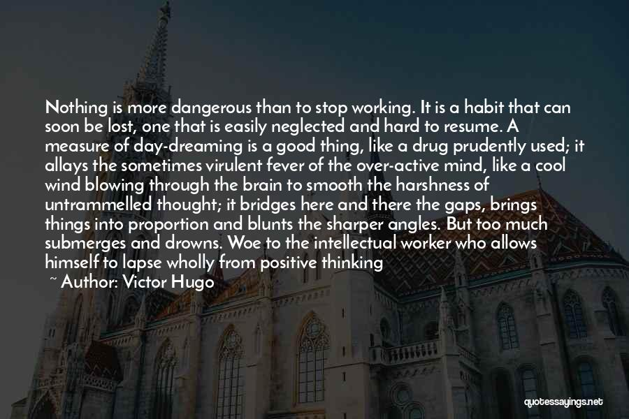 Too Much Hard Work Quotes By Victor Hugo