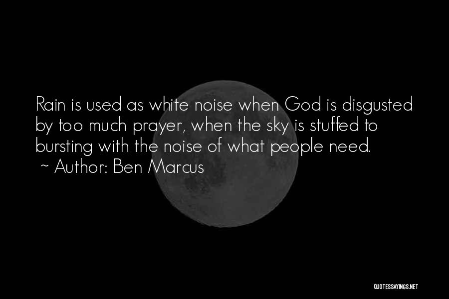 Too Much Noise Quotes By Ben Marcus