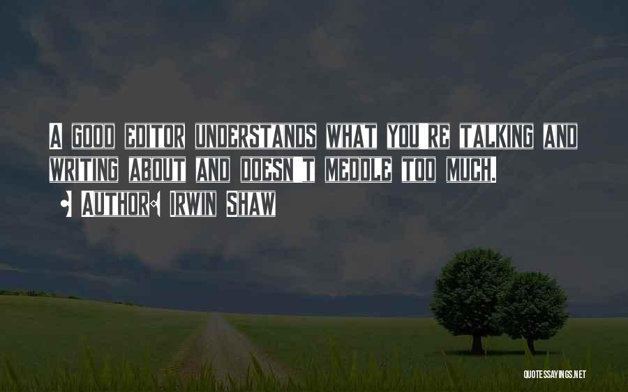 Too Much Talking Quotes By Irwin Shaw