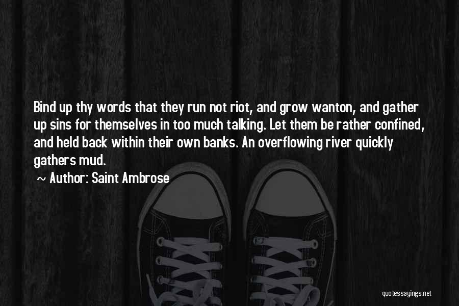 Too Much Talking Quotes By Saint Ambrose