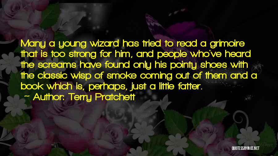 Too Young For Him Quotes By Terry Pratchett