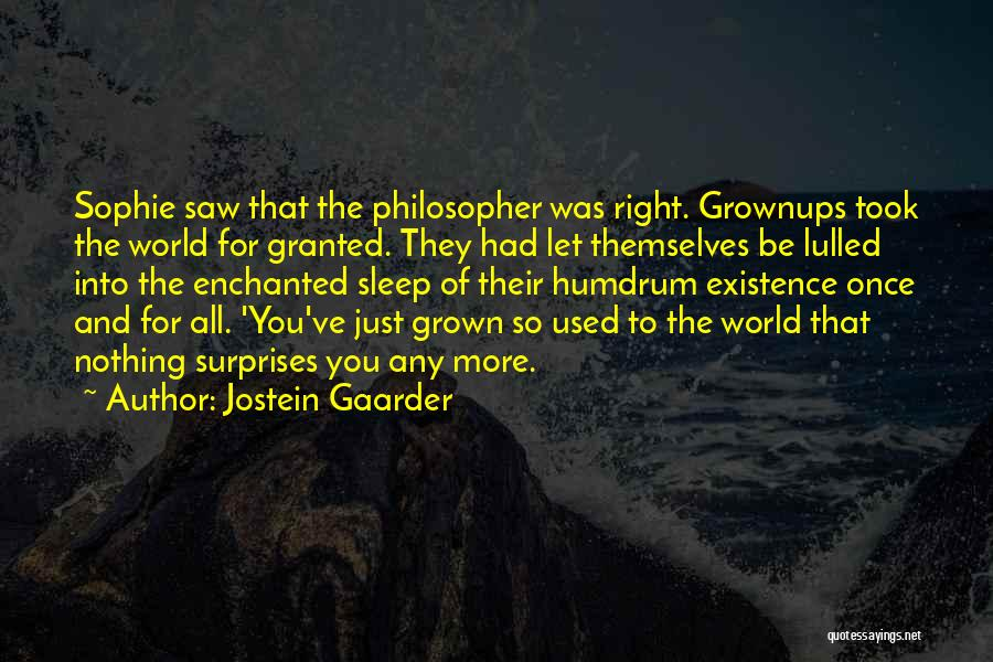 Took You For Granted Quotes By Jostein Gaarder