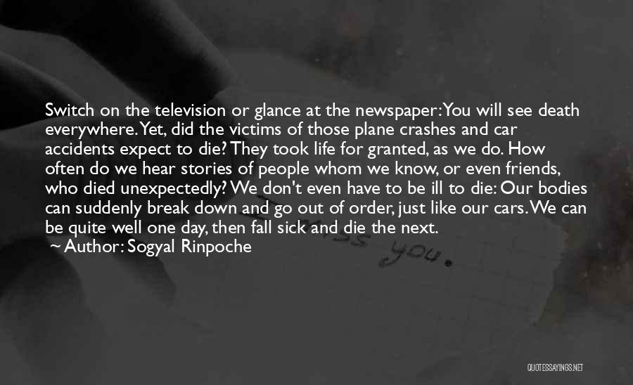 Took You For Granted Quotes By Sogyal Rinpoche