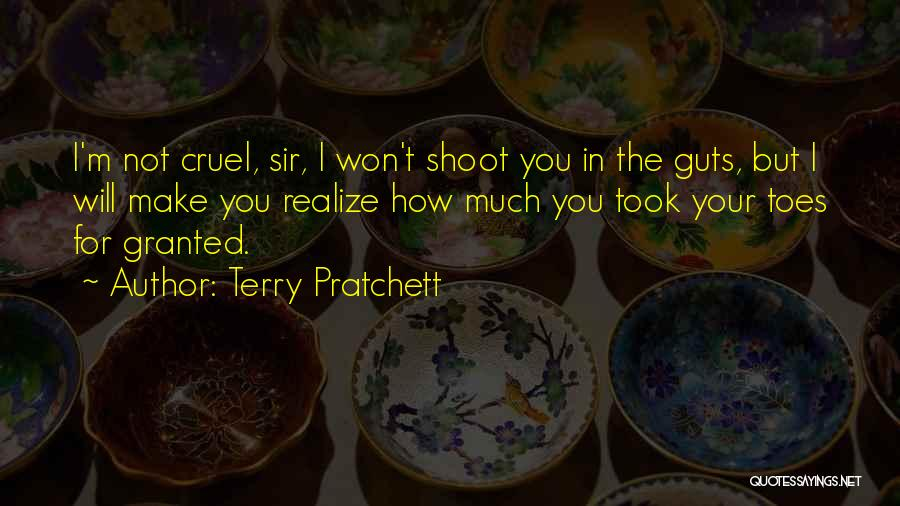 Took You For Granted Quotes By Terry Pratchett