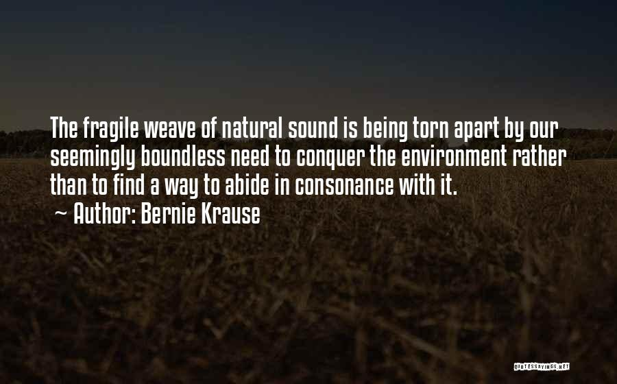 Torn Apart Quotes By Bernie Krause