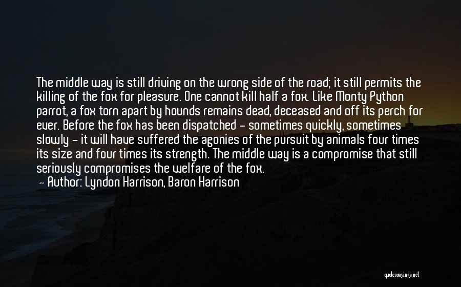 Torn Apart Quotes By Lyndon Harrison, Baron Harrison