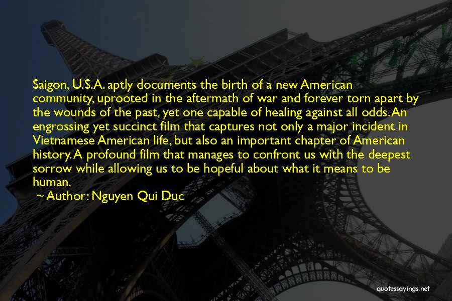 Torn Apart Quotes By Nguyen Qui Duc