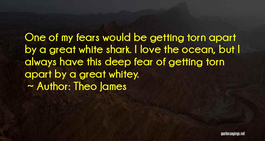Torn Apart Quotes By Theo James