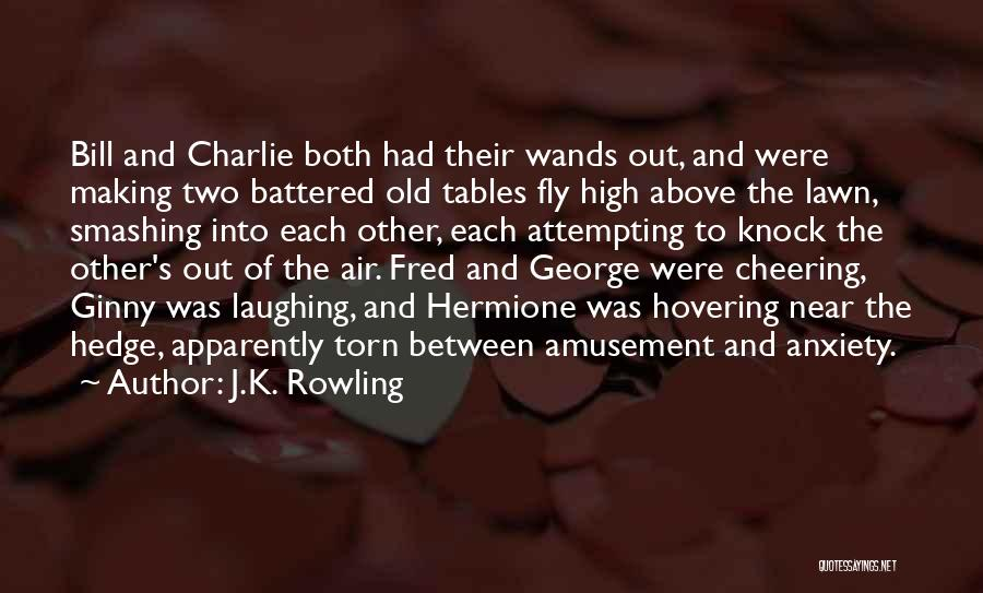 Torn Between Two Quotes By J.K. Rowling