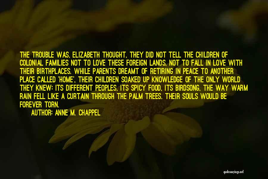 Torn Families Quotes By Anne M. Chappel