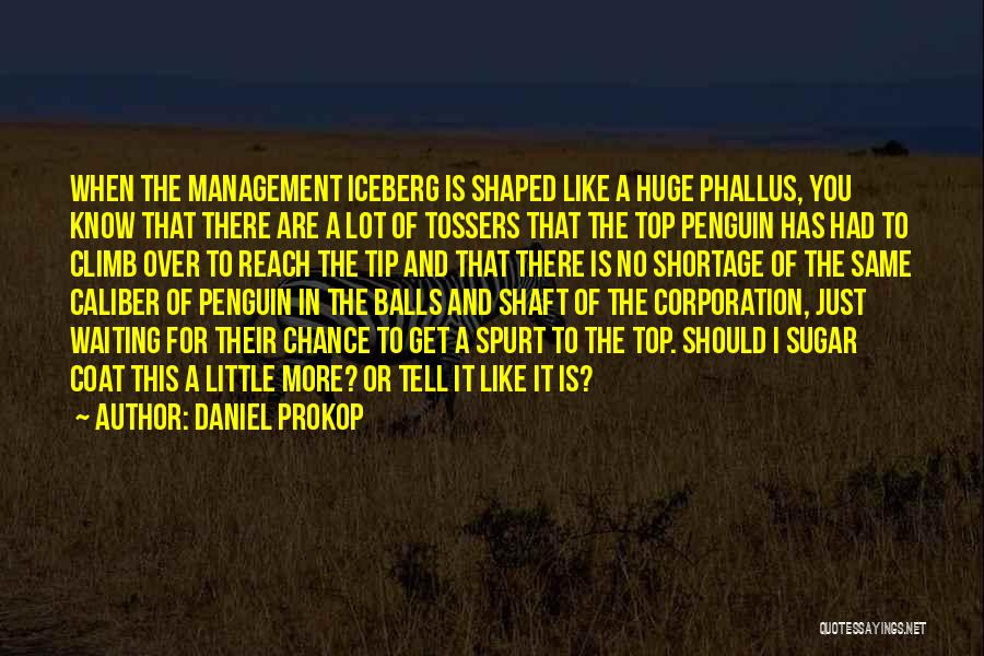 Tossers Quotes By Daniel Prokop