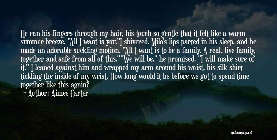 Touch My Family Quotes By Aimee Carter