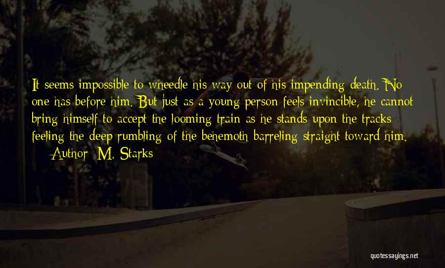 Train Way Quotes By M. Starks