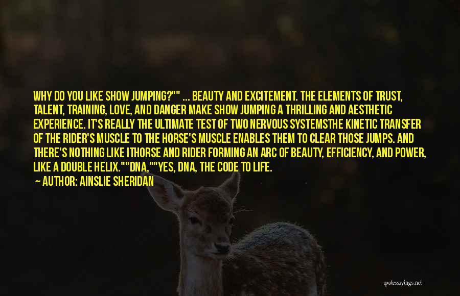 Training Horses Quotes By Ainslie Sheridan