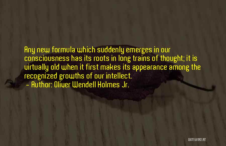 Trains Of Thought Quotes By Oliver Wendell Holmes Jr.