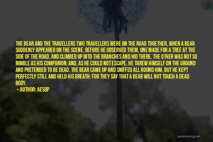 Travel The Road Quotes By Aesop