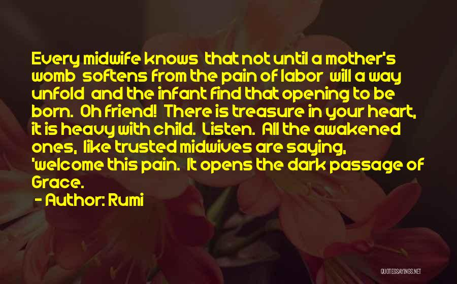 Treasure And Heart Quotes By Rumi
