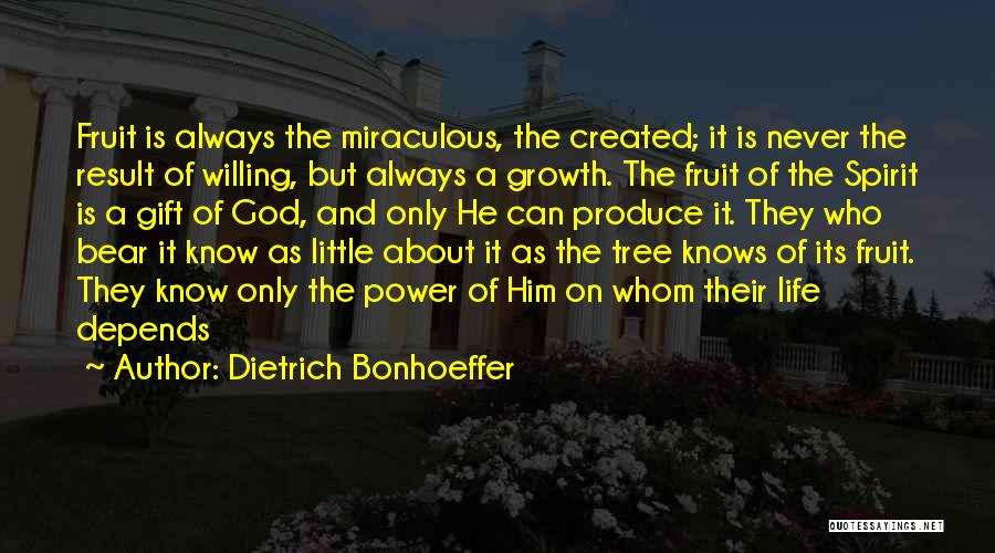 Tree And Quotes By Dietrich Bonhoeffer