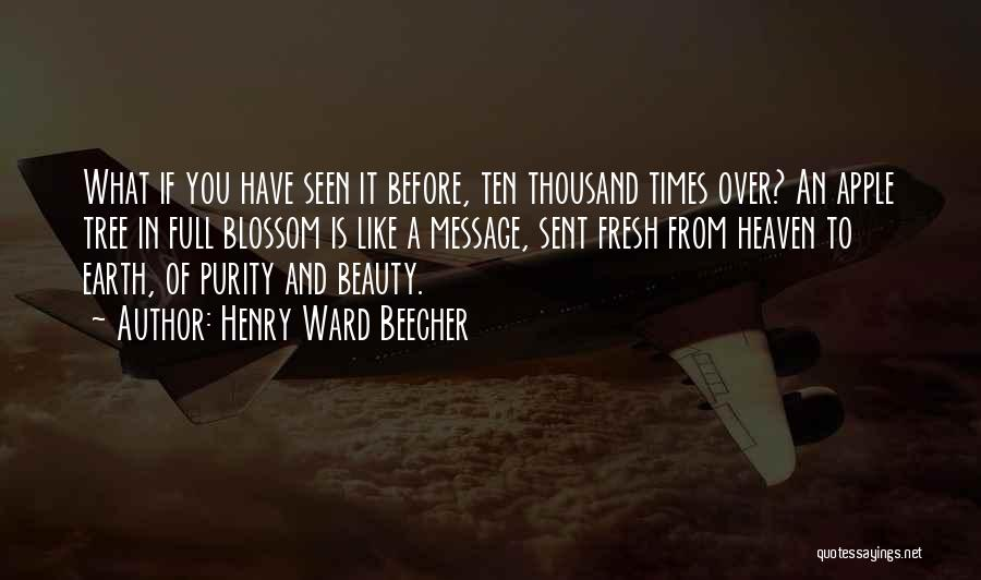 Tree And Quotes By Henry Ward Beecher