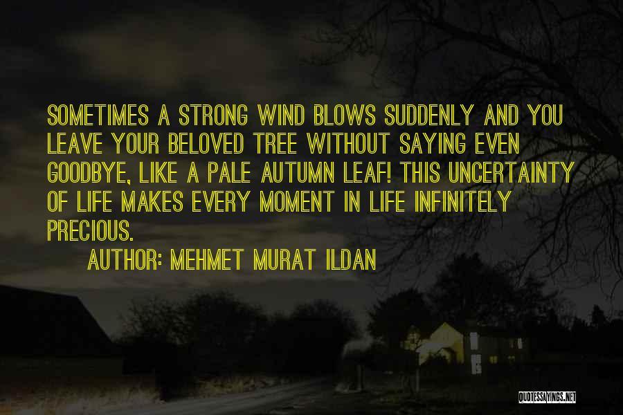 Tree And Quotes By Mehmet Murat Ildan