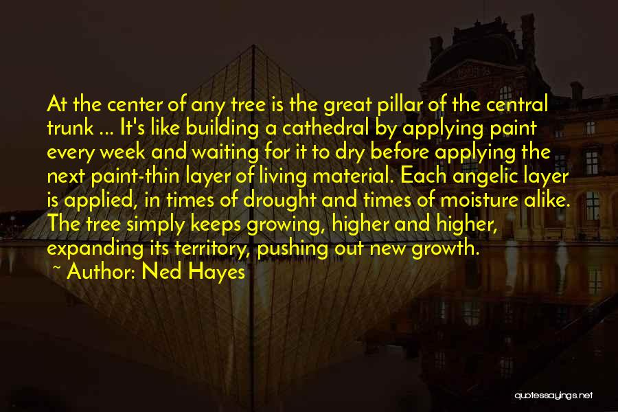 Tree And Quotes By Ned Hayes