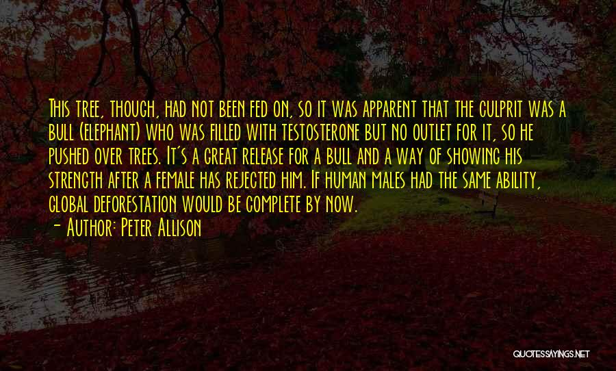 Tree And Quotes By Peter Allison