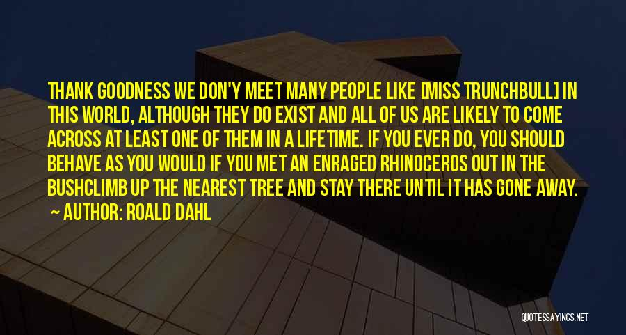 Tree And Quotes By Roald Dahl